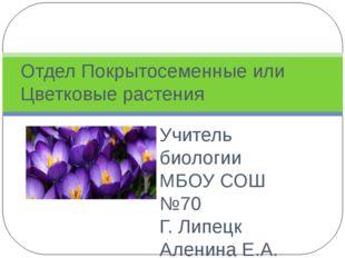Учитель биологии МБОУ СОШ №70 Г. Липецк Аленина Е.А. Отдел Покрытосеменные ил