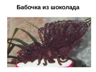 Бабочка из шоколада