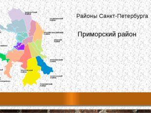 Районы Санкт-Петербурга Приморский район