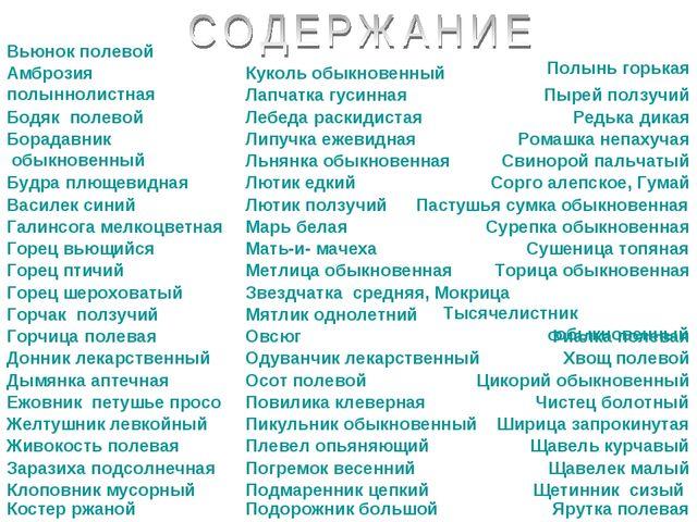 Вьюнок полевой Амброзия полыннолистная Бодяк полевой Борадавник обыкновенный...