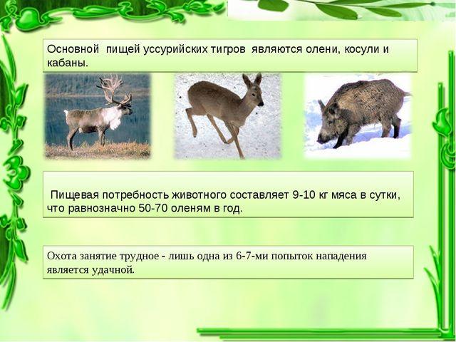 Пищевая потребность животного составляет 9-10 кг мяса в сутки, что равнознач...