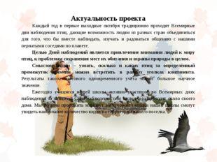 Актуальность проекта Каждый год в первые выходные октября традиционно проход
