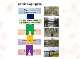 Пруд между улицей М. Горького и ул. Зубова Парк на улице Механизаторов Больн
