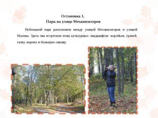 Остановка 1. Парк на улице Механизаторов Небольшой парк расположен между ули