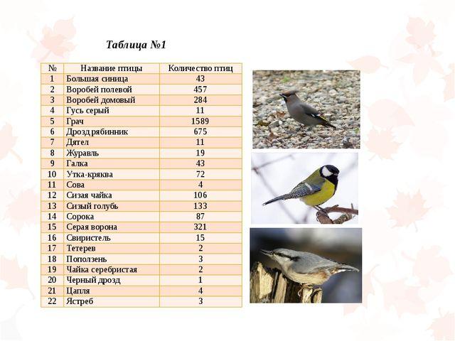 Таблица №1 № Название птицы Количество птиц 1 Большая синица 43 2 Воробей пол...