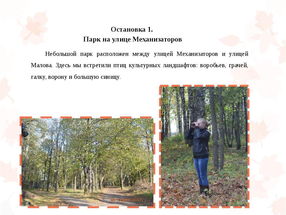 Остановка 1. Парк на улице Механизаторов Небольшой парк расположен между ули...