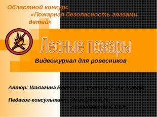 Областной конкурс «Пожарная безопасность глазами детей» Автор: Шалагина Викто