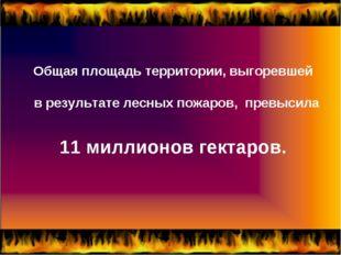 Общая площадь территории, выгоревшей в результате лесных пожаров, превысила 1