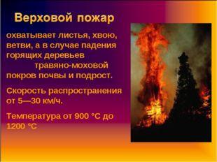 охватывает листья, хвою, ветви, а в случае падения горящих деревьев травяно-м