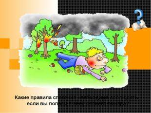Какие правила спасения необходимо соблюдать , если вы попали в зону лесного п