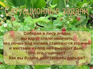 Собирая в лесу ягоды, вы вдруг стали замечать, что почва под ногами становитс
