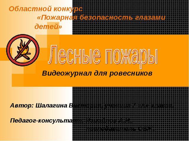Областной конкурс «Пожарная безопасность глазами детей» Автор: Шалагина Викто...
