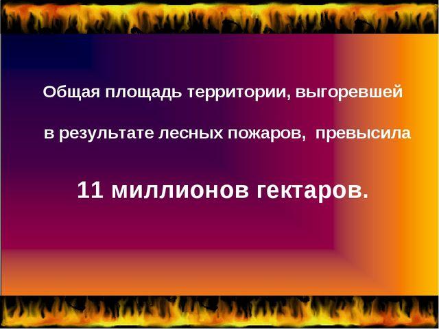Общая площадь территории, выгоревшей в результате лесных пожаров, превысила 1...