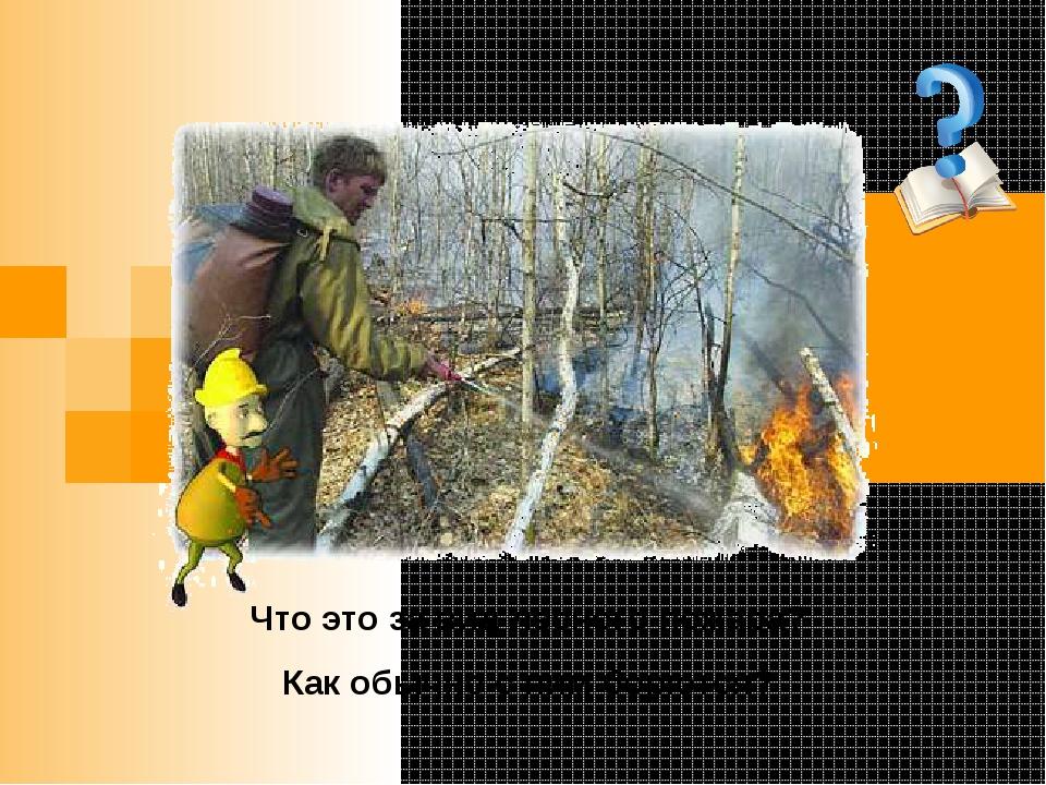 Что это за вид лесного пожара? Как обычно с ним борются?