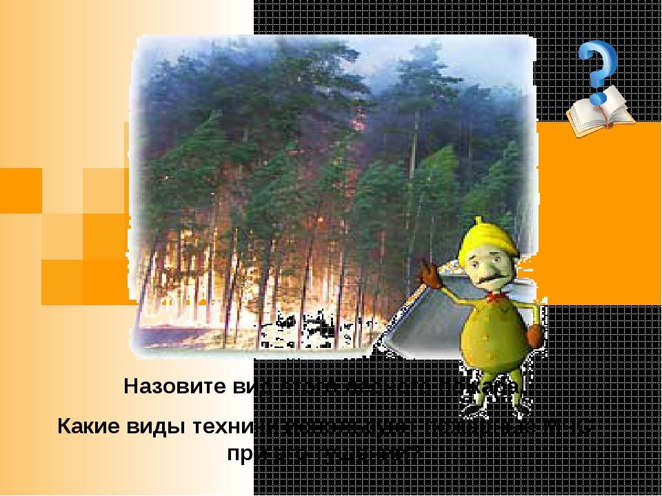 Назовите вид этого лесного пожара. Какие виды техники используют пожарные МЧ...