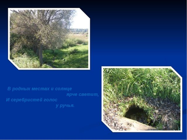 В родных местах и солнце ярче светит, И серебристей голос у ручья.