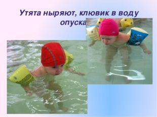 Утята ныряют, клювик в воду опускают