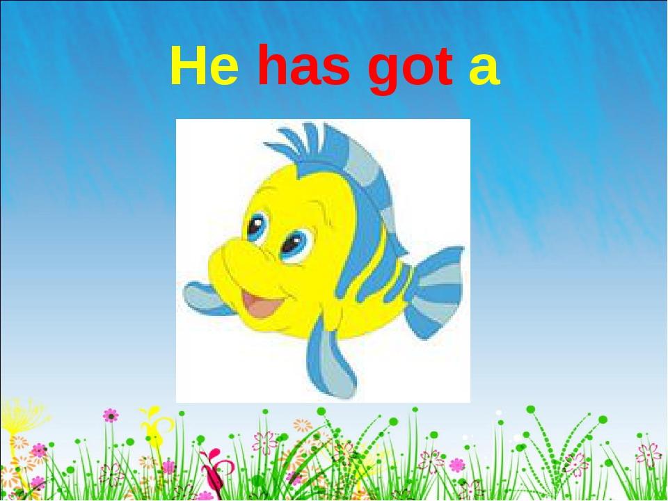 He has got a