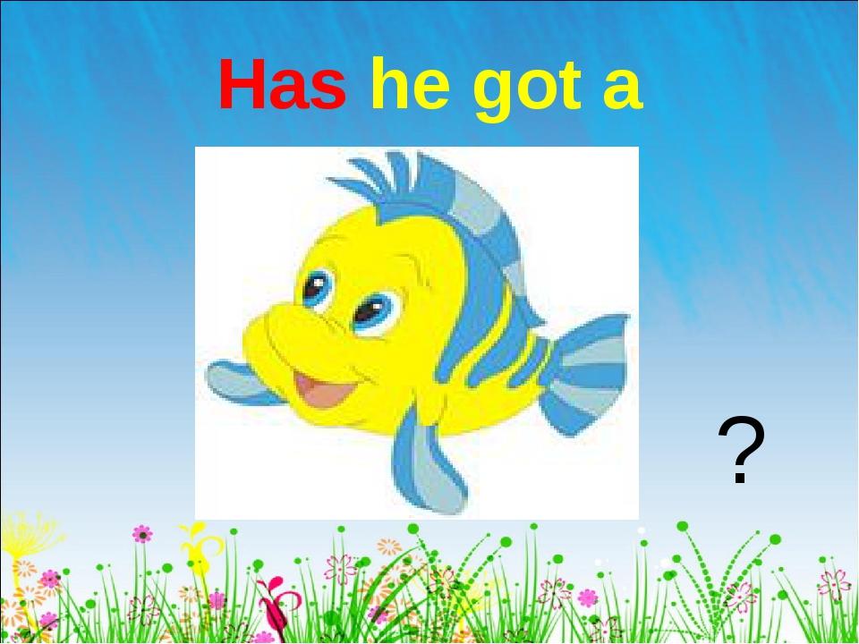 Has he got a ?