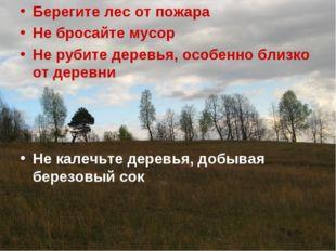 Берегите лес от пожара Не бросайте мусор Не рубите деревья, особенно близко о