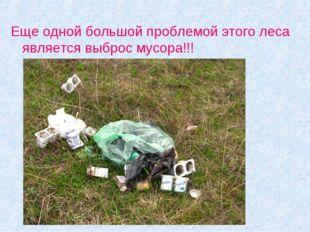 Еще одной большой проблемой этого леса является выброс мусора!!!