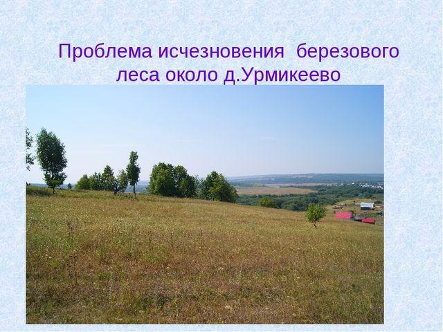 Проблема исчезновения березового леса около д.Урмикеево