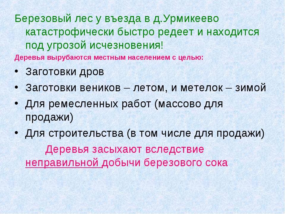 Березовый лес у въезда в д.Урмикеево катастрофически быстро редеет и находитс...