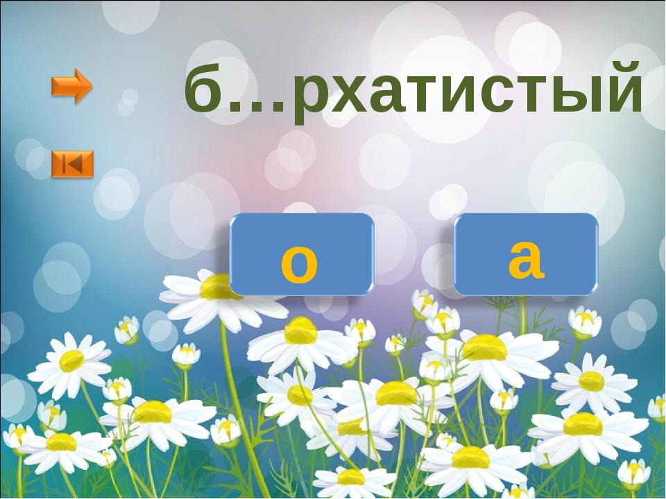б…рхатистый о а