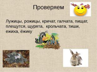 Проверяем Лужицы, рожицы, кричат, галчата, пищат, плещутся, щурята, крольчата