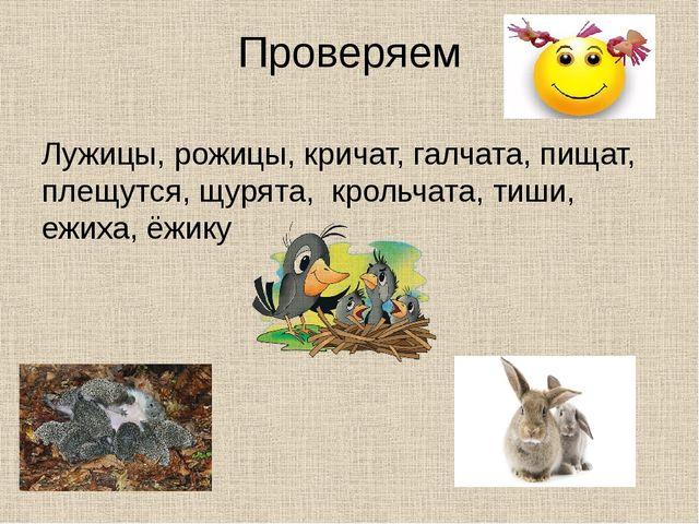 Проверяем Лужицы, рожицы, кричат, галчата, пищат, плещутся, щурята, крольчата...