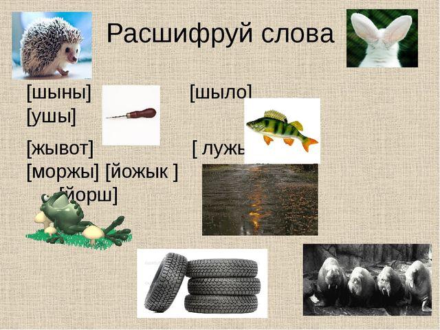 Расшифруй слова [шыны] [шыло] [ушы] [жывот] [ лужы] [моржы] [йожык ] [йэжы ]...