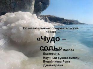 Познавательно-исследовательский проект «Чудо – соль» Выполнила: Малова Екате