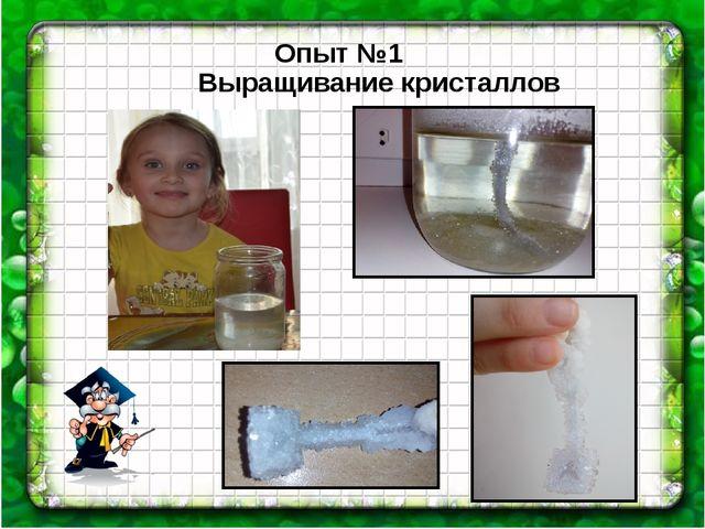 Опыт №1 Выращивание кристаллов
