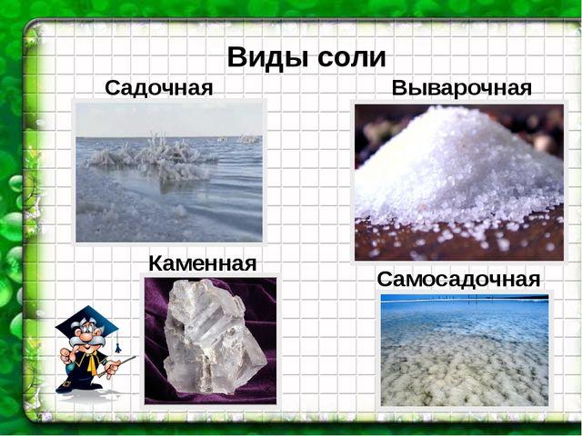 Виды соли Каменная Выварочная Самосадочная Садочная
