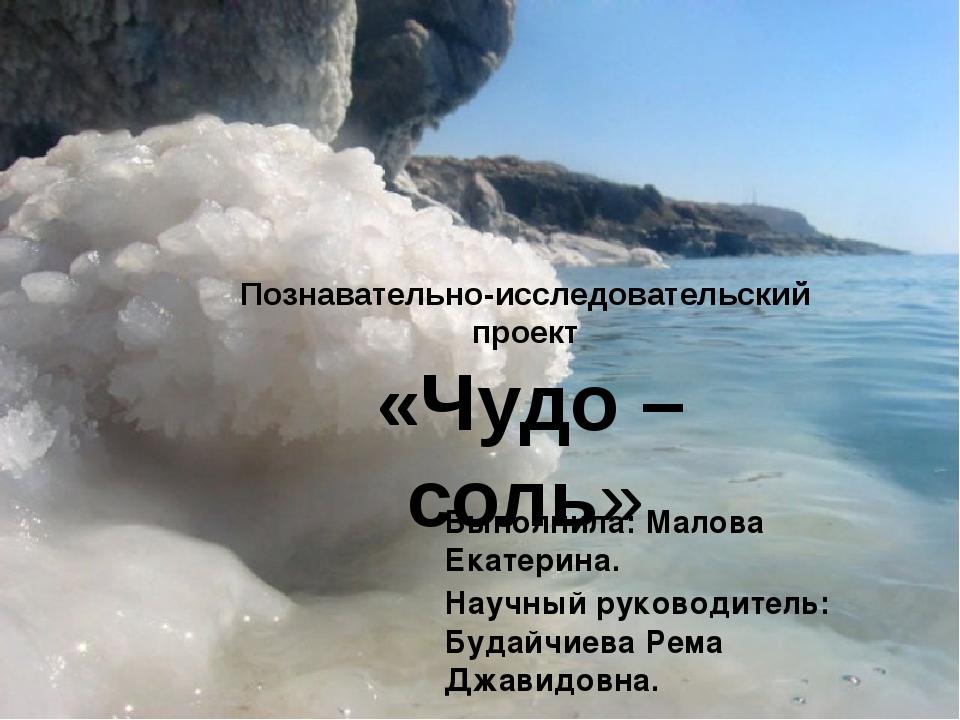 Познавательно-исследовательский проект «Чудо – соль» Выполнила: Малова Екате...