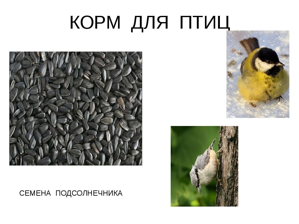 КОРМ ДЛЯ ПТИЦ СЕМЕНА ПОДСОЛНЕЧНИКА