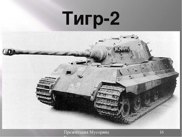 Тигр-2 Презентация Мусорина Евгения