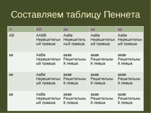 Составляем таблицу Пеннета GАВававав АВААВВ Нерешительный правшаАаВв Не