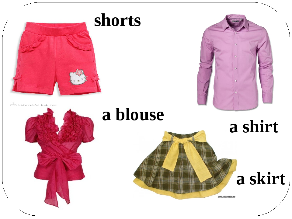 shorts a shirt a blouse a skirt