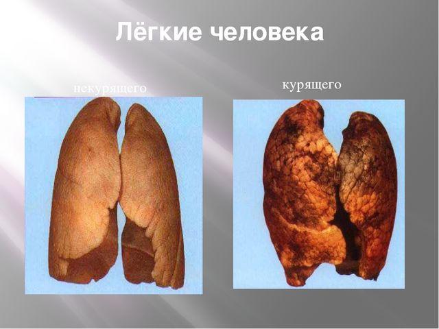Лёгкие человека некурящего курящего