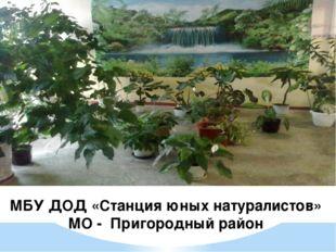 МБУ ДОД «Станция юных натуралистов» МО - Пригородный район