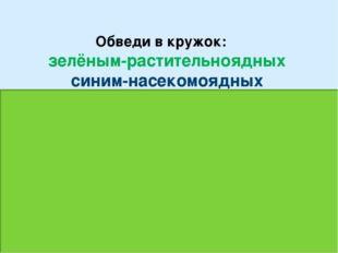 Обведи в кружок: зелёным-растительноядных синим-насекомоядных красным-хищник