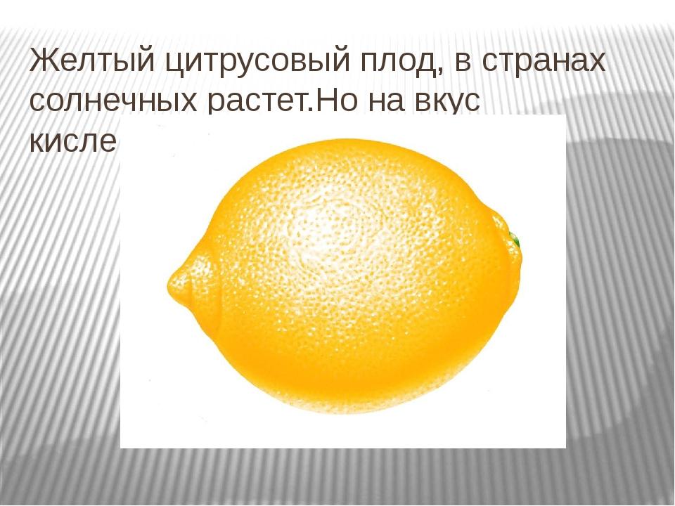 Желтый цитрусовый плод, в странах солнечных растет.Но на вкус кислейший он, а...