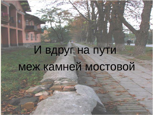 И вдруг на пути меж камней мостовой