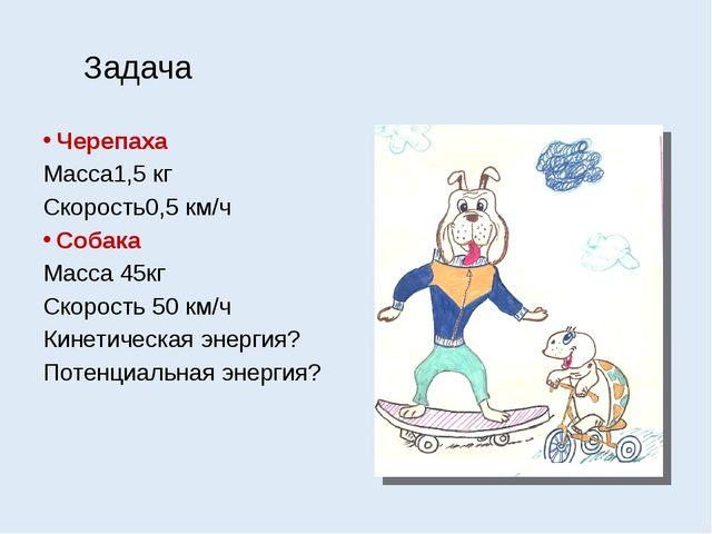Задача Черепаха Масса1,5 кг Скорость0,5 км/ч Собака Масса 45кг Скорость 50 км...