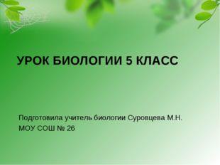 УРОК БИОЛОГИИ 5 КЛАСС Подготовила учитель биологии Суровцева М.Н. МОУ СОШ № 26