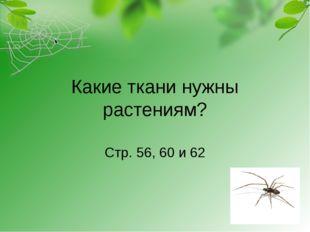 Какие ткани нужны растениям? Стр. 56, 60 и 62