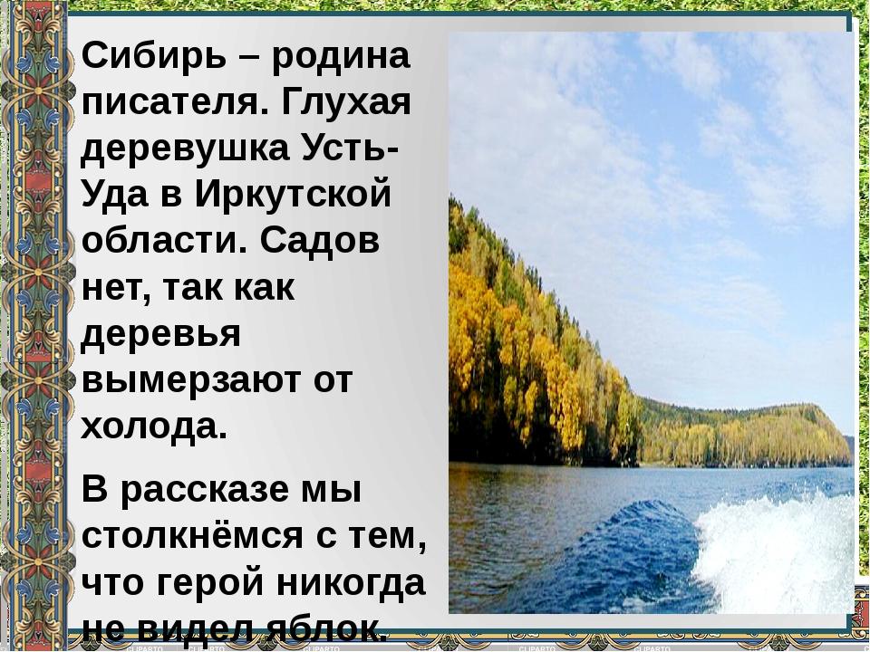 Сибирь – родина писателя. Глухая деревушка Усть-Уда в Иркутской области. Садо...
