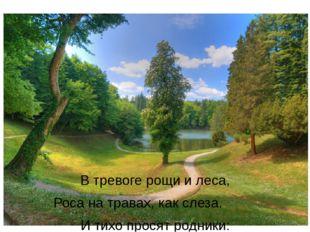 В тревоге рощи и леса, Роса на травах, как слеза. И тихо просят родники: «Ты