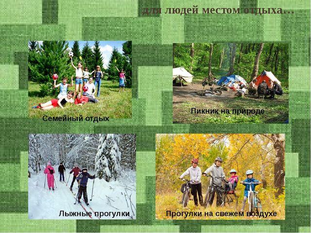 для людей местом отдыха… Семейный отдых Пикник на природе Лыжные прогулки Про...